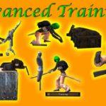 Advanced training dummies (lvl 70) — тренировочные манекены