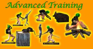 Advanced training dummies (lvl 70) - тренировочные манекены