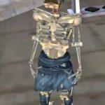 Скелет Агну
