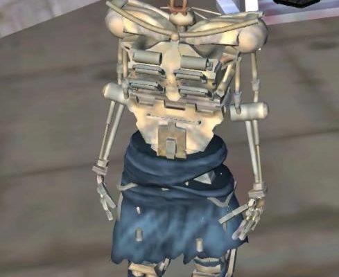 Агну скелет